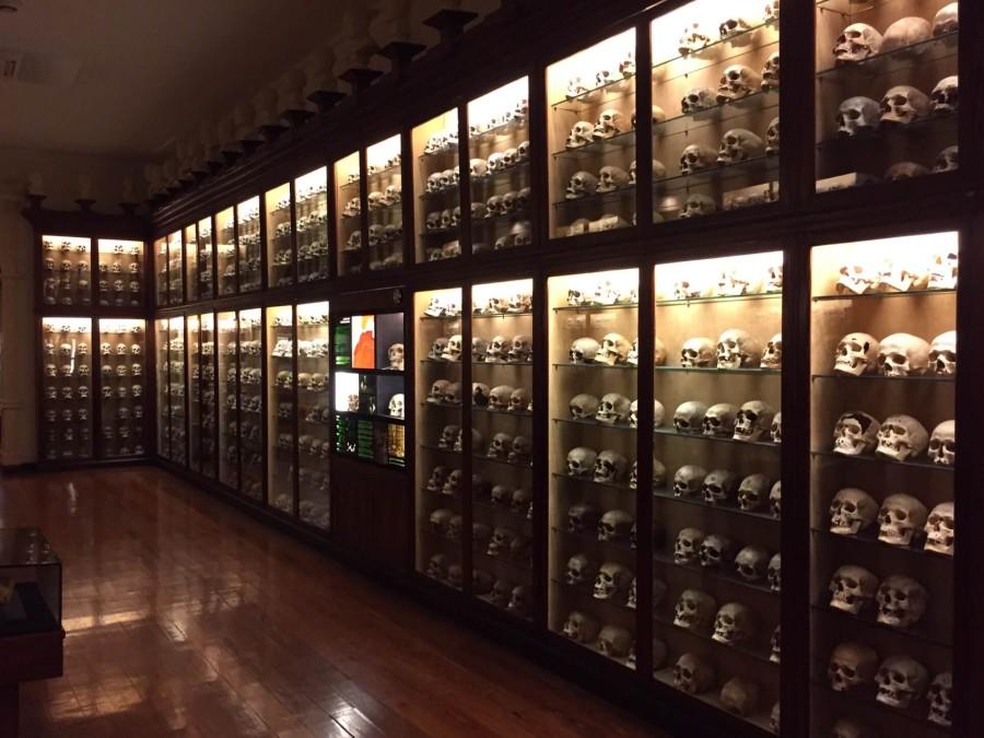 Das Kanarische Museum