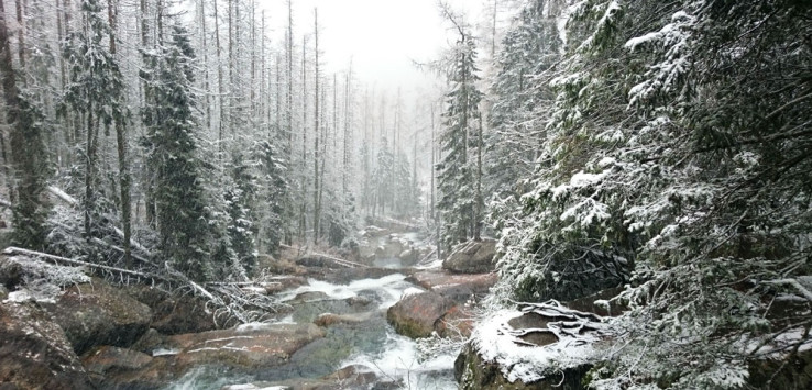 Die Kaltwasserfälle in der Nähe von Hrebienok